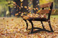 Élvezd az őszi időt velünk!