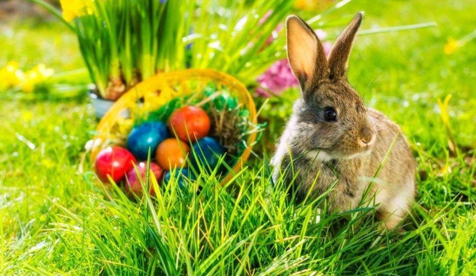 Húsvéti ajánlatok útmutatója