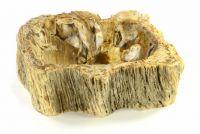 DIVERO Mosdókagyló természetes kőből - FOSSIL